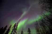 northern lights YMM